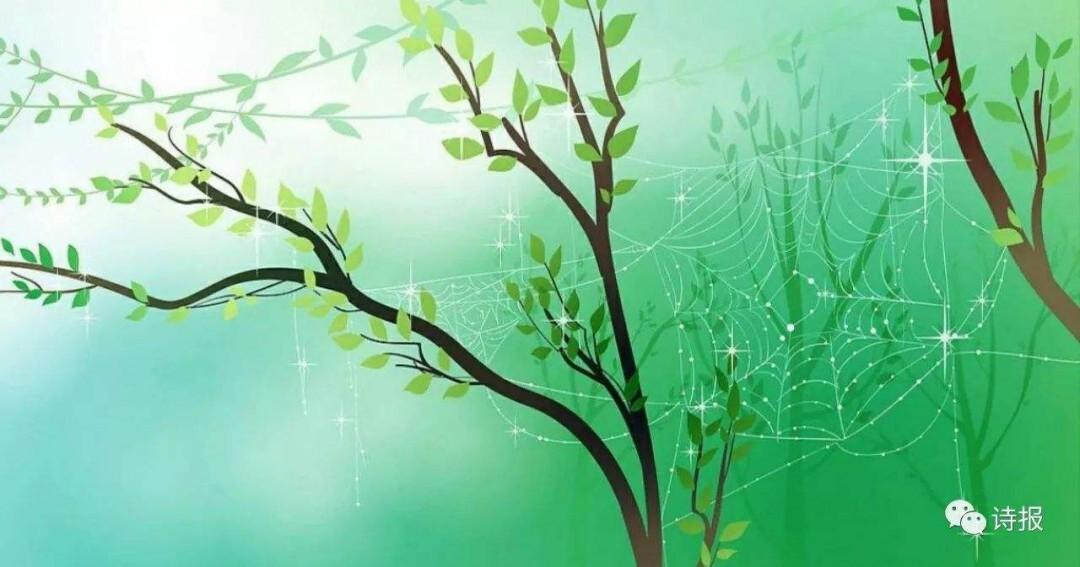 关于柳树的诗句 描写柳树的诗句图片