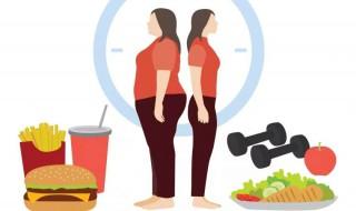 增肥的方法 增肥的技巧   增肥的方式神录视频