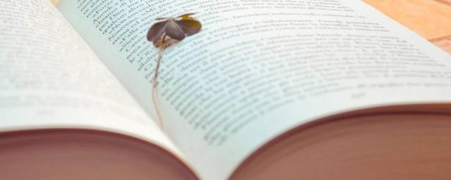 文案温柔古风,对于仙到极致的温柔句子的要点