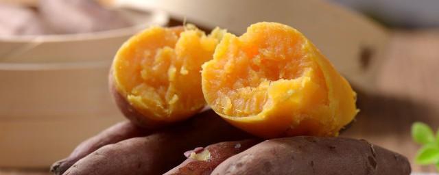 红薯玉米糁钓鲤鱼怎么做解释,理解红薯玉米糁钓鲤鱼如何做