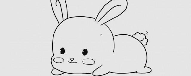兔子怎么画如何,兔子怎么画可以吗