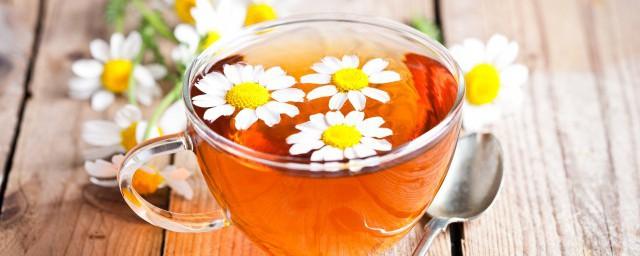 哪五类人不能喝菊花茶须知道