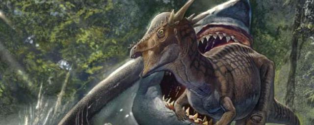 龙是由哪几种动物组成(龙是由多少种动物组成)