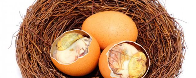 鸡胚蛋吃了有什么功效须知道