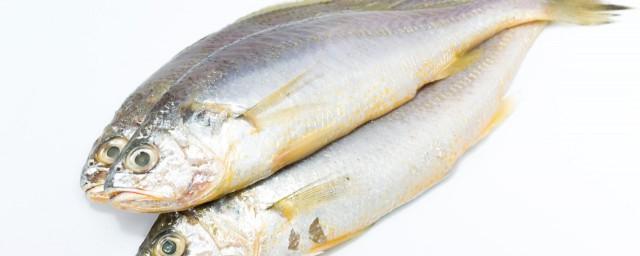 黄花鱼饺子的做法,原来关于黄花鱼饺子的做法